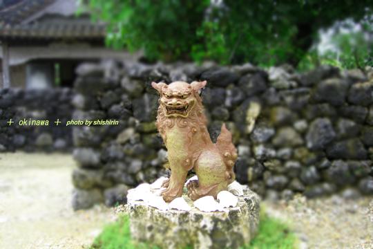 okinawa0066.jpg